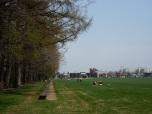 グリーンパークの400mベンチ